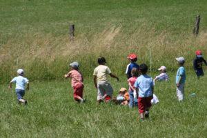 Les enfants dans les prés