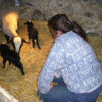 Anne avec les nouveaux nés